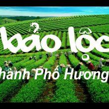 Dịch vụ cho thuê xe từ Sài Gòn đi Bảo Lộc giá rẻ