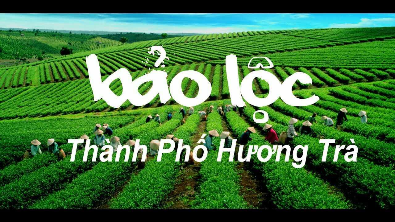 thuê xe đi Bảo Lộc